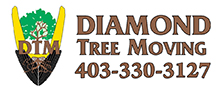 Diamond Tree Moving Ltd.